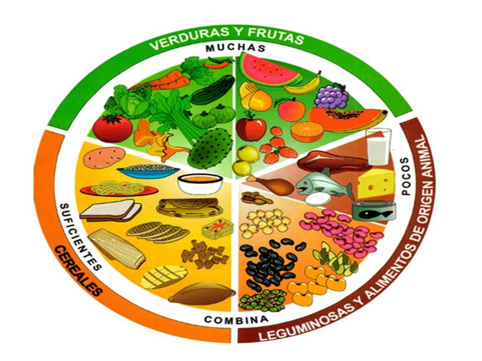 La secretar a de salud recomienda incluir el plato del Plato rapido y facil de preparar