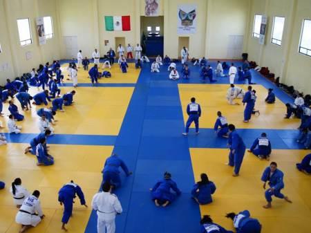judokas se concentran para panamericano infantil