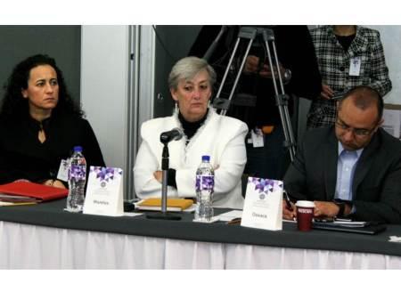 Guillermina Vázquez Benítez se integra a la APPICEEF