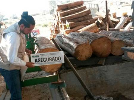 PROFEPA clausura total temporal el centro de almacenamiento de materias primas forestales
