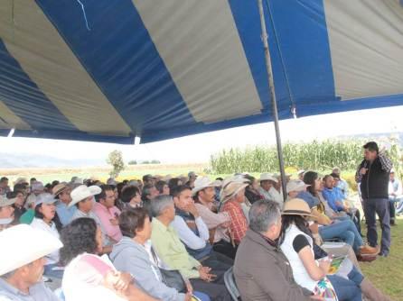 ofrece-sedagroh-nuevas-opciones-de-cultivo-por-contrato-a-productores-de-hidalgo4