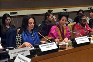 Empoderamiento, desarrollo económico y erradicación de la violencia contra las mujeres indígenas; Temas prioritarios de la CDI en la ONU