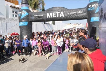 SSH y su voluntariado realizan la Cuarta Caminata con tu Mascota