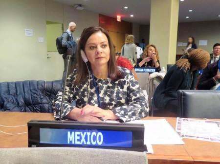 Nuvia Mayorga Delgado participa en la ONU2