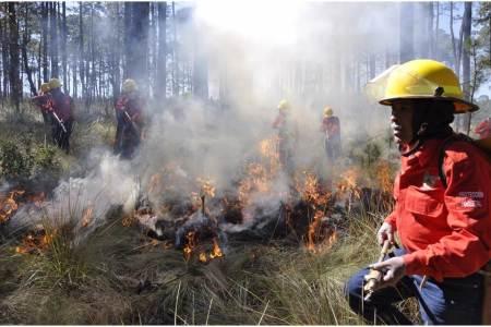 Operativo de Semarnath atiende 15 incendios forestales durante periodo vacacional2