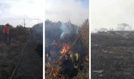 Por lo menos 10 incendios forestales se registran en las últimas 24 horas en Hidalgo2