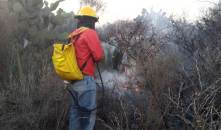 Por lo menos 10 incendios forestales se registran en las últimas 24 horas en Hidalgo3
