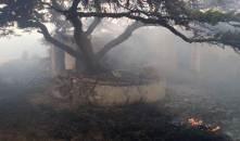 Por lo menos 10 incendios forestales se registran en las últimas 24 horas en Hidalgo4