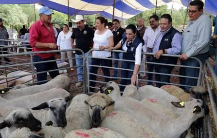 Directora del Sistema DIF Hidalgo realiza entrega de proyectos productivos1