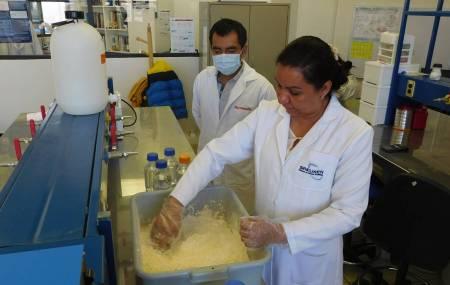 Hallan científicos de UAEH metales tóxicos en niños hidalguenses2