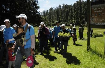Decenas de familias participaron en la siembra de más de mil 800 árboles de Oyamel en el Parque Nacional El Chico4