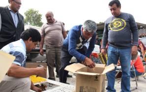 Gabriel García Rojas entrega 30 huertos de traspatio a familias en situación de vulnerabilidad3
