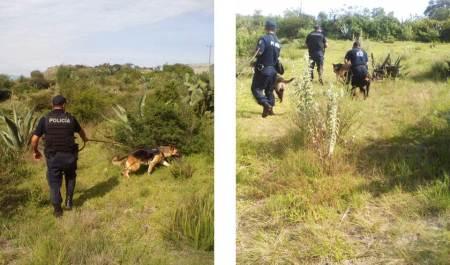 Operativo coordinado policial deja cuatro detenidos en Acatlán2