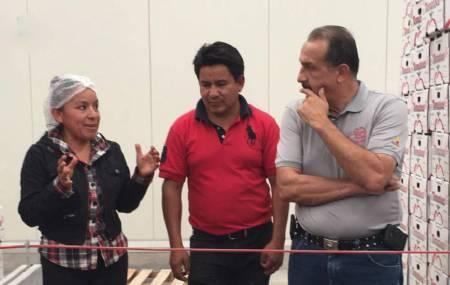 SEDECO apoya y acompaña a MiPymes de Chilcuautla que exportan jitomate a Estados Unidos1.jpg