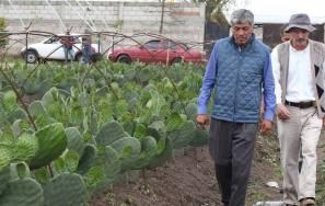 Gabriel García Rojas promueve cultivos alternativos entre los ejidatarios1
