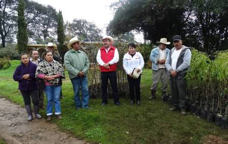 Entrega Alejandro Ramírez Furiati árboles frutales para huertos de traspatio1