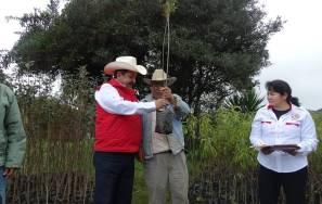 Entrega Alejandro Ramírez Furiati árboles frutales para huertos de traspatio3