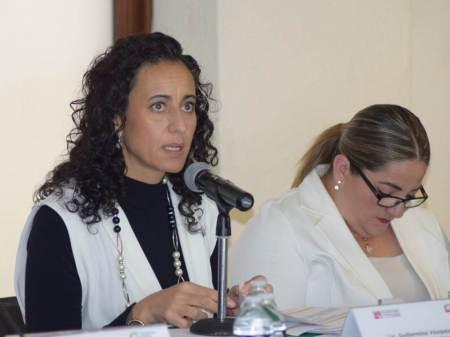 Participación del IEEH en reunión del Observatorio de Participación Política en Hidalgo2