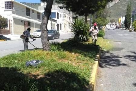Trabaja Presidencia Municipal de Pachuca en conservación de áreas verdes 1.jpg