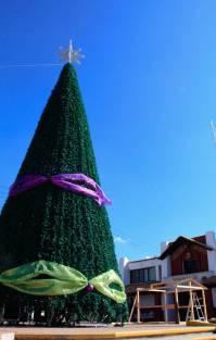 DIF Municipal de Mineral de la Reforma invita a encendidos de árboles navideños 3