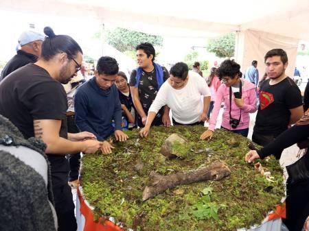 Festival Universitario del Hongo, entre los mejores del mundo2