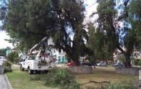Gobierno cercano a la ciudadanía en Mineral de la Reforma, objetivo del alcalde Rául Camacho Baños 2