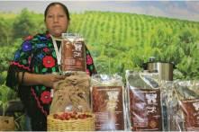 Visitantes nacionales y extranjeros disfrutan la 6ª Expo de los Pueblos Indígenas2