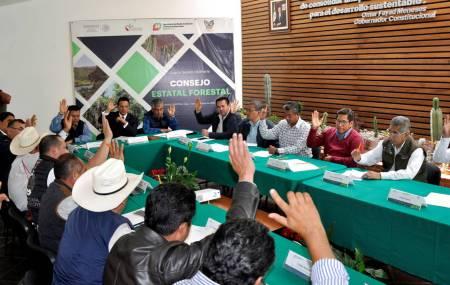 Consejo estatal forestal establece compromiso para fortalecer el sistema de detección de incendios forestales2