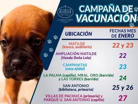 Ayuntamiento de Pachuca llevara a cabo campaña de vacunación antirrábica del 22 al 27 de enero.jpg