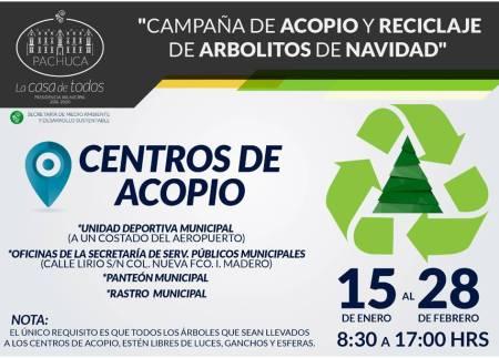 Ayuntamiento de Pachuca realizara acopio y reciclaje de árboles de navidad hasta el 28 de  febrero.jpg