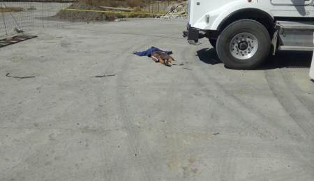 Ejecutan a un hombre en Tizayuca; implementan operativo para búsqueda de los agresores