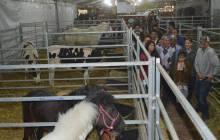 Gabriel Garcia anuncia que está lista la Expo Feria Tizayuca 20183