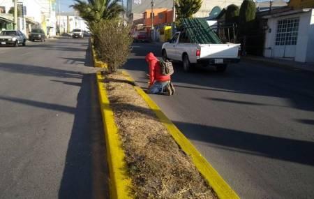 Servicios municipales  de Mineral de la Reforma realiza acciones permanentes en colonias 2.jpg