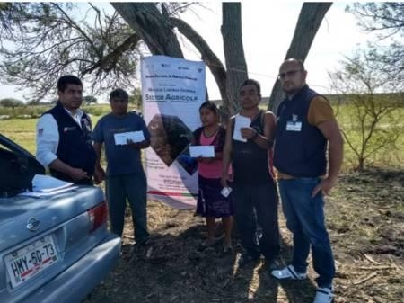 Colocan 737 trabajadores agrícolas en campos mexicanos1