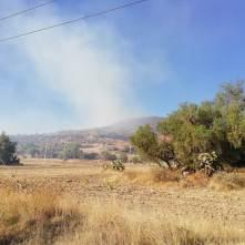 Sábado de incendios en la zona del Xihuingo2
