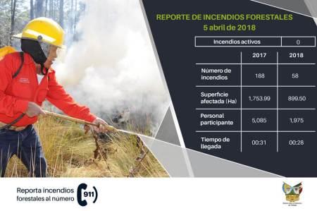 Suman casi 900 hectareas forestales afectadas por incendios