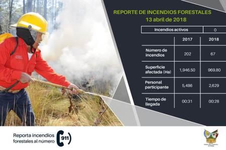 Suman en Hidalgo casi mil hectareas forestales afectadas por incendios