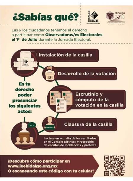 Infografia observadores electorales 2