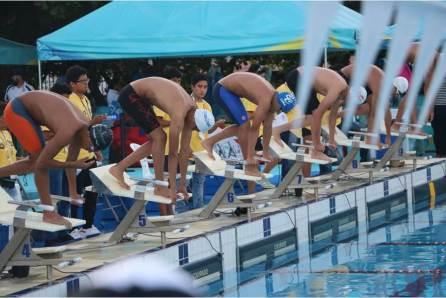 Plata y bronce para Hidalgo en natación4
