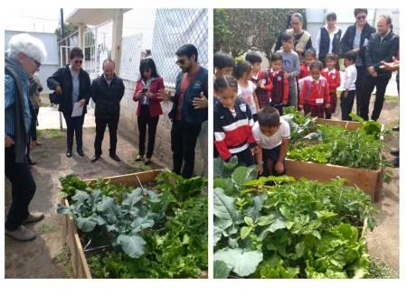 Mineral de la Reforma apuesta por escuelas verdes.jpg