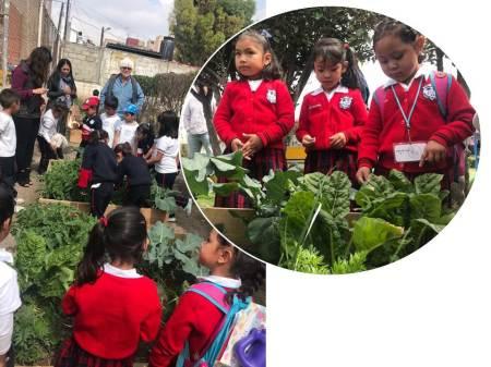 Mineral de la Reforma apuesta por escuelas verdes2