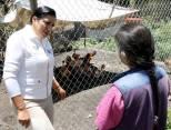 Titular del Sistema DIF Hidalgo entrega apoyos del programa Comunidad DIFerente a comunidades de Actopan4