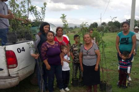 Más de 9, 500 árboles fueron sembrados en diversas comunidades y ejidos de Santiago Tulantepec2