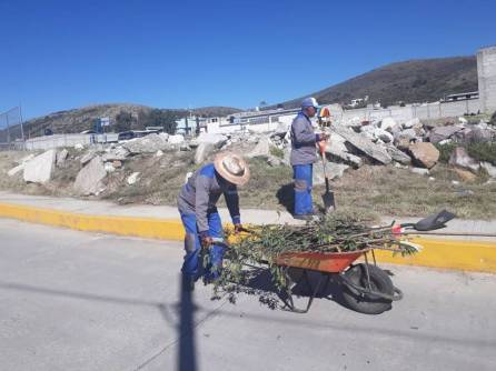 Mineral de la Reforma refuerza trabajos de limpieza en colonias 3