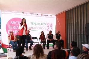STPSH acerca oportunidades de empleo en Tepeapulco