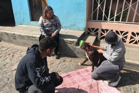 1er Campaña de esterilización canina2
