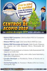 habilita mineral de la reforma 7 centros de acopio para árboles de navidad