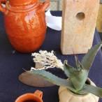 se alista el 2do festival del pulque en tetepango2