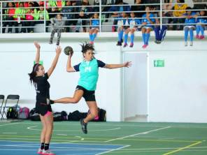 Box, luchas asociadas y handball realizarán este sábado selectivo estatal1