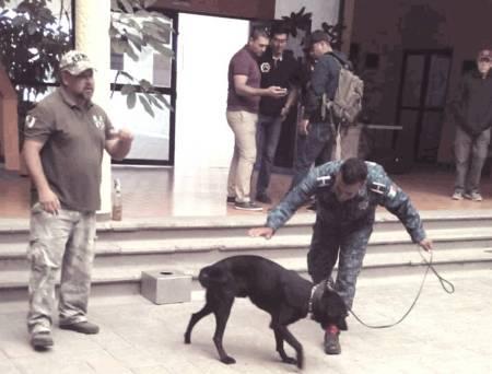 Certifican a perros policía de la SSPH en congreso internacional2